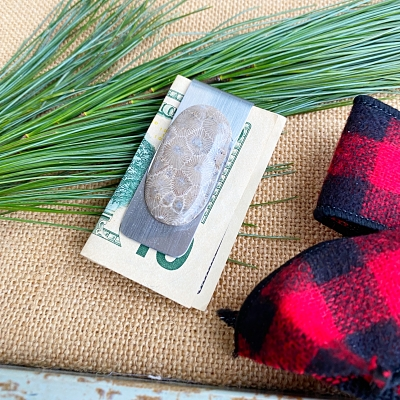 Petoskey Stone Money Clip - E