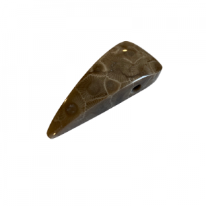 Petoskey Stone Pendant - G