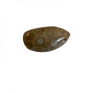 Petoskey Stone Pendant - H