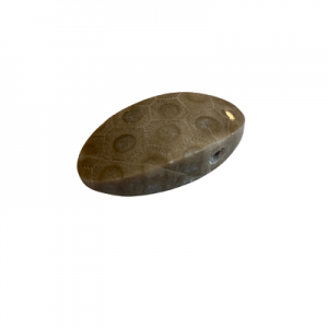 Petoskey Stone Pendant - O