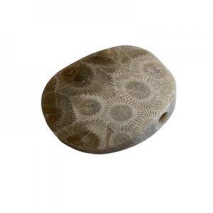 Petoskey Stone Pendant - Q