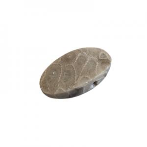 Petoskey Stone Pendant - R