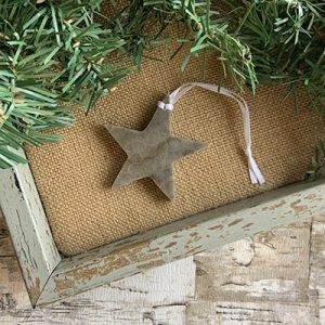 Star Petoskey Stone Ornament C