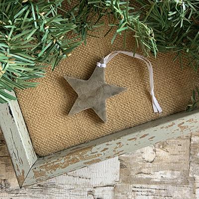 Star Petoskey Stone Ornament C