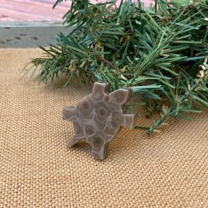 Turtle Petoskey Stone Magnet - A