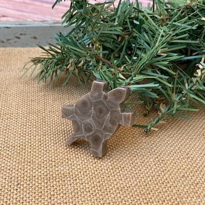 Turtle Petoskey Stone Magnet - A
