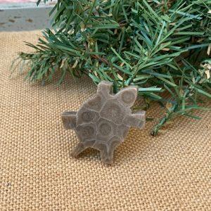 Turtle Petoskey Stone Magnet - E