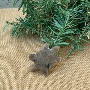 Turtle Petoskey Stone Magnet - Q